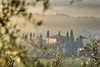 A9905768_s (AndiP66) Tags: villabelvedere villa belvedere sonnenaufgang sunrise nebel dunst fog mist sonne sun morgen morning april spring frühling 2017 zypressen cypresses sony alpha sonyalpha 99markii 99ii 99m2 a99ii ilca99m2 slta99ii tamron tamronspaf70200mmf28dildif tamron70200mm 70200mm f28 amount andreaspeters