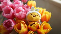 Peak a Pooh (the snow bunny) Tags: cute pooh poohbear winniethepooh tulips flower vase pinkflower orangeflower yellowflower tulip vancity vancouver 604 yvr