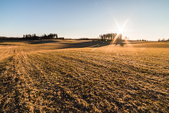 Morning in the fields (Nippe16) Tags: landscape sunrise goldenhour classical wide angle nature outdoor