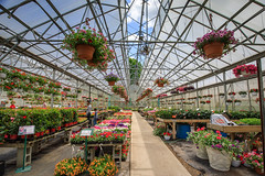 Green House (Jemlnlx) Tags: canon eos 5d mark iv 5d4 5div ef 1635mm f4 l is usm landscape bw circular polarizer filter filters tiffen gnd graduated neutral density stacked greenhouse nursery plants stokes farm new jersey nj