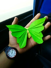 Butterfly - Javier Vivanco (javier vivanco origami) Tags: butterfly origami javier vivanco peru ica mariposa