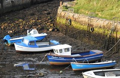 Blue Fishing Boats - Seaton Sluice Harbour (Gilli8888) Tags: northeast boats coast maritime fishingboats harbour seatonsluice coastal blue five nikon coolpix p900
