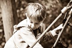Zachary (littlestschnauzer) Tags: zac child climbing play outdoors park boy portrait nikon adventure uk young 2017 summer playground area fun family