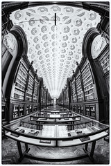 Library in Parma (Roswitz) Tags: library pilotta