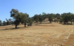 14 Dowling Drive, Murringo NSW