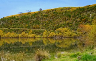 I wish I can go to NZ again - autumn at Lake Hayes