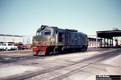 1299 X1010 Arawodi Forrestfield 16 August 1980 (RailWA) Tags: railwa philmelling westrail x1010 arawodi forrestfield 16 august 1980