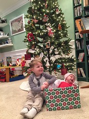 "Christmas Card Photo Shoot • <a style=""font-size:0.8em;"" href=""http://www.flickr.com/photos/109120354@N07/33629249264/"" target=""_blank"">View on Flickr</a>"