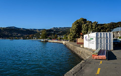 Temporary Shop (Jocey K) Tags: akaora bankspeninsula newzealand shippingcontainer trees buildings sea water akaoraharbour hills scene sky nikond750