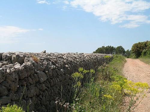 Mur de restanques