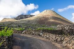 Lanzarote (Canaries/Espagne) (PierreG_09) Tags: lanzarote canaries espagne ile volcan lacorona volcanique désertique ye vigne muret murette piste chemin pathscaminhos