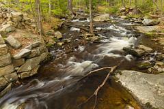 Downstream Surge (loomstone) Tags: cascades slowshutter willardbrookstateforest trapfallbrook springrunoff ashby massachusetts