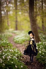 forest path (koroa) Tags: bjd doll feeriedoll feeriedollatelier flowers forest leekeworld