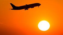 Kenya Airways Boeing 787-8 Dreamliner 5Y-KZC (Ewout Pahud de Mortanges) Tags: sun sunset boeing airways 787 outdoor schiphol airport aviation jet jetliner aircraft airliner airliners photo flickr