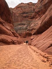 hidden-canyon-kayak-lake-powell-page-arizona-southwest-IMG_6511