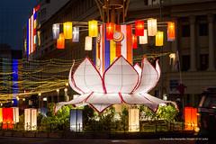 UN's Vesak day in Colombo (Dhammika Heenpella / Images of Sri Lanka) Tags: dhammikaheenpella srilanka 2017 imagesofsrilanka vesak wesak galleface illuminated lantern religion කොළඹ ධම්මිකහීන්පැල්ල වෙසක් ශ්රීලංකාව