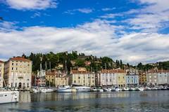 Piran, Slovenia (fotoalex757) Tags: piran slovenia landscape adriatic sea 2017 alex antonic fotoalex757 aantonic73 aantonic aleksander