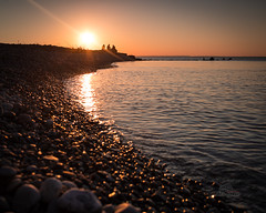 May 22: 3 birds and 4 geese (_Matt_T_) Tags: smcpfa35mmf20al beach sunset victoriadayweekend simay2017 pebbles dusk singlechallenge lakeontario formatthitechsoftgradnd09