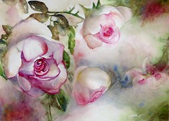 27 16l17 printemps de rose et vice versa (Plume de soi (e)) Tags: