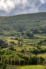 Toscana verticale (blackcat83) Tags: cipressi toscana nuvole tuscany sangimignano cypress landscape ngc