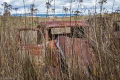 Abandoned (David Recht) Tags: palouse garfield washington unitedstates car abandoned broken down antique