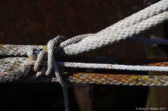 Knot (walkerross42) Tags: knot rope abandoned machine farm bennington idaho lichen rustyandcrusty