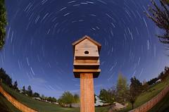 5/8/17 (davetefft) Tags: nikon nikkor d7000 star trails night oregon spring