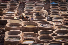 Working in the leather tanneries in Fes, Morocco (Tim van Woensel) Tags: fes morocco africa leather tanneries el bali old medina fez man work travel fèsmeknès unesco world heritage site