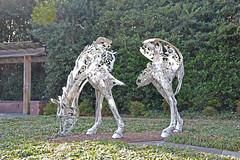 North Carolina, Cary (EC Leatherberry) Tags: northcarolina wakecounty carynorthcarolina horsesculpture
