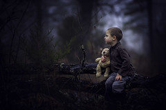 Alone, but not Alone (Phillip Haumesser Photography) Tags: alone teddybear child kid boy woods forest blue dark love scared sony rokinon 85mm philliphaumesser