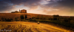 Tuscan Landscape (Juan Figueirido) Tags: tuscan tuscany toscana italia italian italy travel viajar travelling landscape paisajes fields fz1000