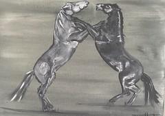 #horses #equine #art #artforsale #arty #painting #stallions (Jane Haigh Art) Tags: horses equine art artforsale arty painting stallions