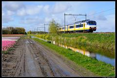 NSR-2947_Hil_28042017 (Dennis Koster) Tags: ns nsr sgm sgmm 2947 hillegom trein personentrein passagierstrein bollen