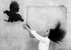 Wings (szincza) Tags: littledoglaughednoiret child black white hen wings hair artlibres artlibrewinner