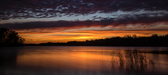 Tonight's sunset (Kevin Povenz Thanks for the 3,200,000 views) Tags: 2017 may kevinpovenz westmichigan michigan ottawacounty ottawa ottawacountyparks thebendarea pond lake reflection water clouds evening sunset dusk canon7dmarkii sigma1020 yellow blue orange