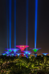 Sabertrees (BP Chua) Tags: starwars starwarsday gardensbythebay singapore asia night longexposure light lightbeam lightbeams beams colors supertrees supertree garden event movie lightsabers landscape nikon d800e festival maythe4th may4th maythe4thbewithyou