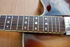 Hofner President acoustic (johnbaz77) Tags: hofner president acoustic guitar archtop framus cutaway