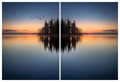 The birds in the opposite (Andreas Larzon Photography) Tags: birds blue orange nikon d7200 sigmaart 1835mm composit long exposure görväln sweden järfälla bluehour sigma1835mmf18dchsm formatthitechfirecrest