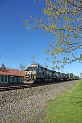 Spring in Olmsted Falls (craigsanders429) Tags: norfolksoutherntrains norfolksouthern nschicagoline nsstacktrains stacktrains intermodaltrains nsintermodaltrains olmstedfallsohio railfanninginolmstedfallsohio spring trainsandspring ns9659 depots traindepots railroaddepots