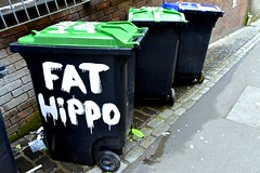 What's your's called? (violetchicken977) Tags: signsunday label sign notice wheeliebin grafitti