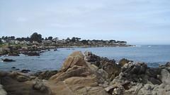 IMG_6146 (cheryl's pix) Tags: california pacificgrove pacificgroveca