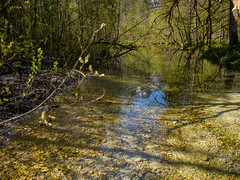 P5060106 (turbok) Tags: almsee bergsee landschaft wasser c kurt krimberger
