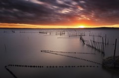 Follow the lines (Anto Camacho) Tags: albufera landscape bigstopper sunset lake waterscape clouds sun valencia nature largaexposición longexposure red