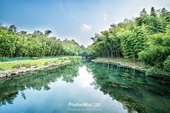 Bamboo Reflections (Andy Brandl (PhotonMix)) Tags: landscape tranquility bamboo park bench nopeople china hangzhou nikon hdr water reflections zhejiang