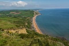 #Dorset (anuradhadeacon-varma) Tags: goldencap coastalpath dorset