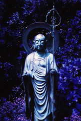 (daveknapik) Tags: 日本 鎌倉 江ノ島 kamakura japan enoshima buddha buddhism buddhist statues statue film lomo lomography lomochromepurple 35mm canonet canonetgiiiql17