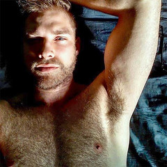 1238 (rrttrrtt555) Tags: hair hairy chest muscles beard stubble blond bed lounge arms armpit masculine bedroom eyes stare flex shoulders sheets