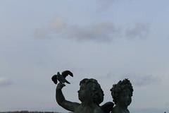 IMG_2779 (valentinperrier) Tags: versailles chateaudeversailles statue enfant oiseau
