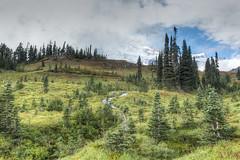 Mount Rainier - Paradise (josephghammashi) Tags: paradise mountrainier altavista washington ashford usa us