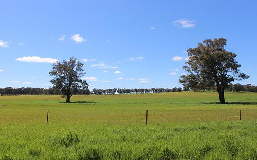Address available on request, Springdale NSW 2666